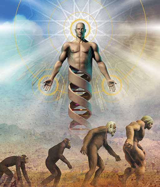 Transformarea ADN-ului Uman