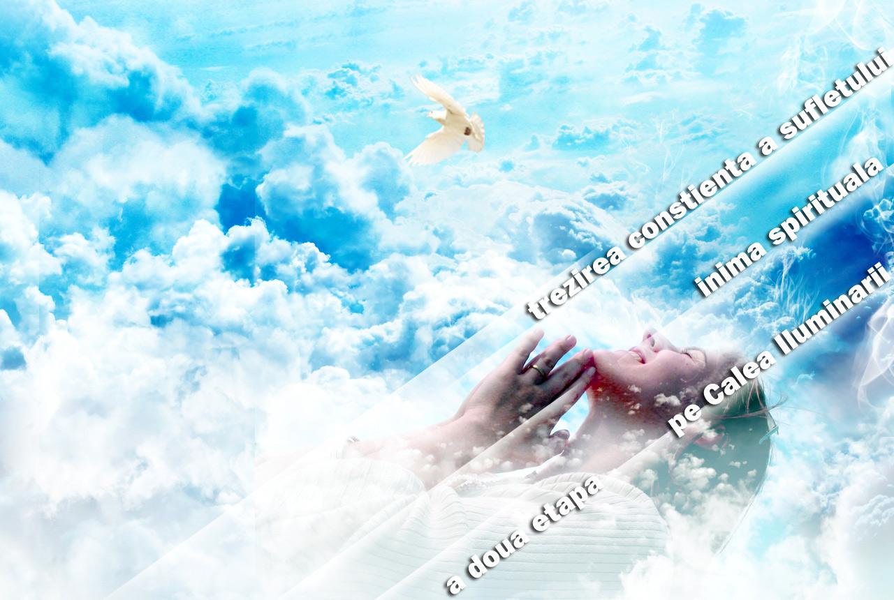 perfect mind seminar Trezirea Sufletului