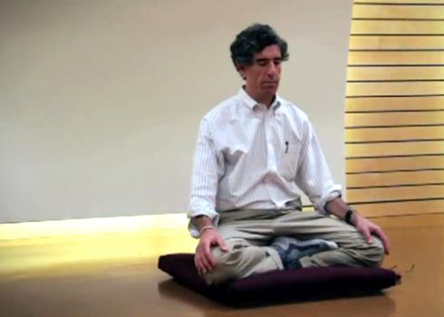 Richard Davidson meditatnd